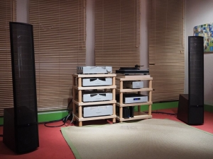 Feickert pure audio martin logan 002